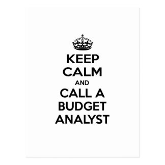 Keep Calm and Call a Budget Analyst Postcard