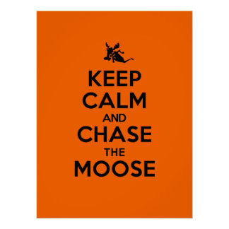 Keep Calm And Chase The Moose Poster