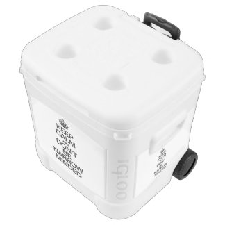 KEEP CALM AND DONT BE NARROW MINDED IGLOO ROLLING COOLER