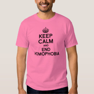 KEEP CALM AND END HOMOPHOBIA T SHIRT