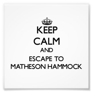 Keep calm and escape to Matheson Hammock Florida Photograph