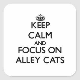 Keep Calm and focus on Alley Cats Square Sticker