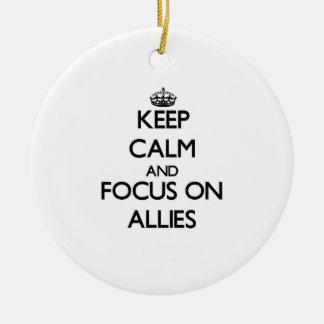Keep Calm And Focus On Allies Christmas Ornament