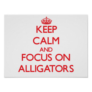 Keep calm and focus on Alligators Poster