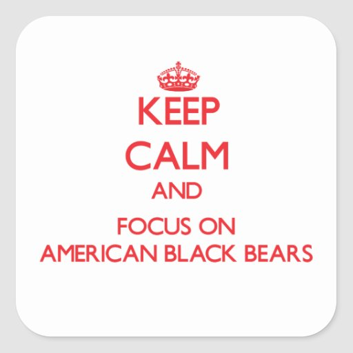 Keep calm and focus on American Black Bears Stickers