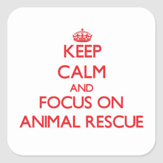 Keep calm and focus on Animal Rescue Square Sticker