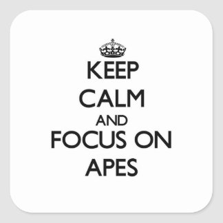 Keep Calm And Focus On Apes Square Sticker