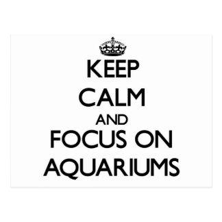 Keep calm and focus on Aquariums Postcard
