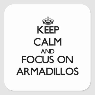 Keep calm and focus on Armadillos Square Sticker