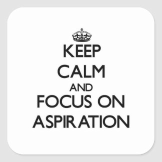 Keep Calm And Focus On Aspiration Stickers