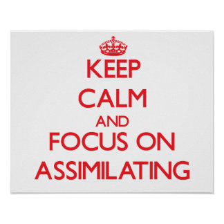 Keep calm and focus on ASSIMILATING Poster