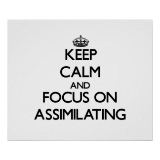 Keep Calm And Focus On Assimilating Print