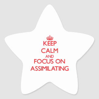 Keep calm and focus on ASSIMILATING Stickers