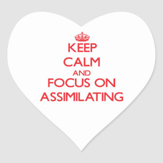 Keep calm and focus on ASSIMILATING Sticker
