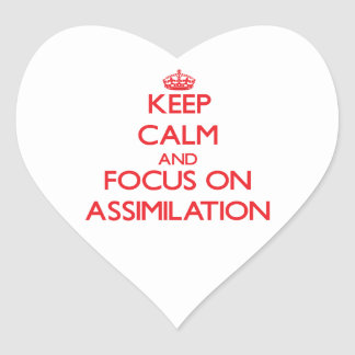 Keep calm and focus on ASSIMILATION Sticker