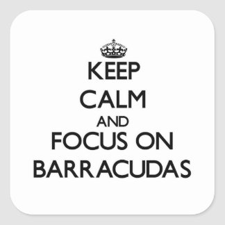Keep Calm and focus on Barracudas Square Stickers