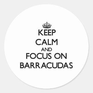 Keep Calm and focus on Barracudas Sticker