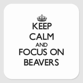 Keep Calm and focus on Beavers Sticker