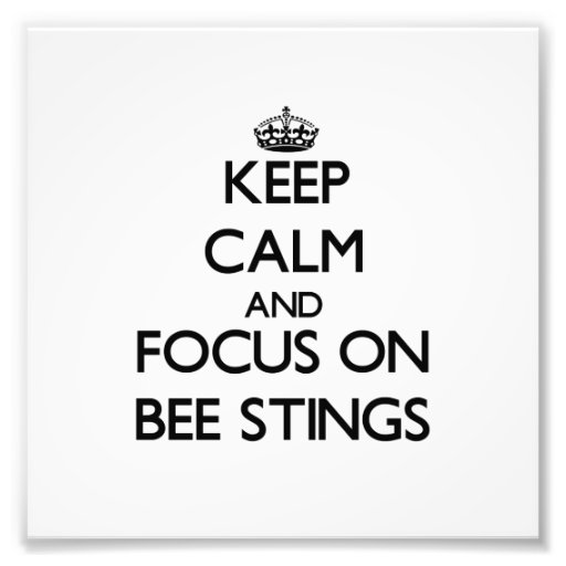 Keep Calm and focus on Bee Stings Photo