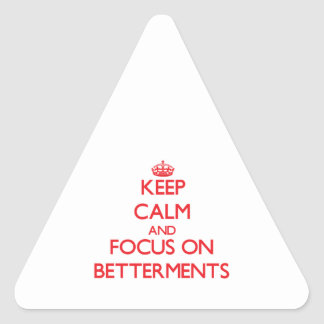 Keep Calm and focus on Betterments Triangle Sticker