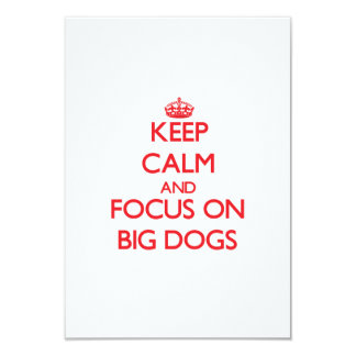 Keep Calm and focus on Big Dogs 3.5x5 Paper Invitation Card
