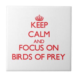 Keep calm and focus on Birds Of Prey Ceramic Tile