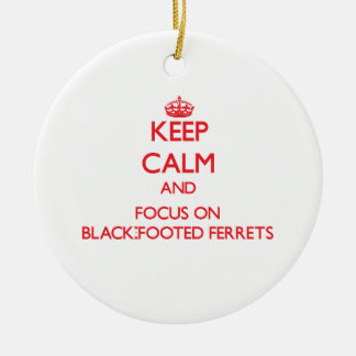 Keep calm and focus on Black-Footed Ferrets Ornament