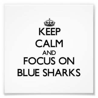 Keep calm and focus on Blue Sharks Photograph