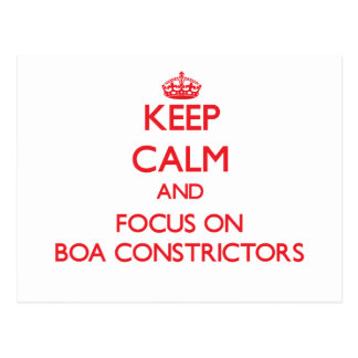 Keep Calm and focus on Boa Constrictors Postcard