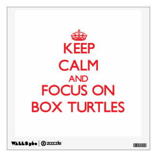 Keep Calm and focus on Box Turtles Wall Sticker
