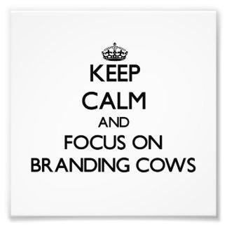 Keep Calm and focus on Branding Cows Photo Print