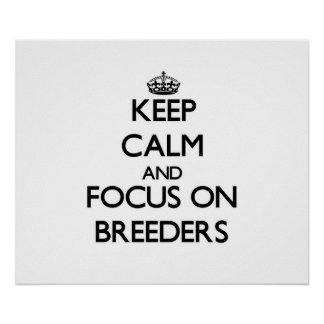Keep Calm and focus on Breeders Poster