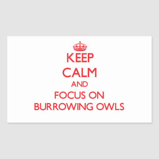 Keep calm and focus on Burrowing Owls Sticker