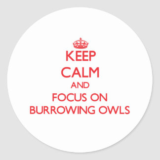 Keep calm and focus on Burrowing Owls Round Stickers