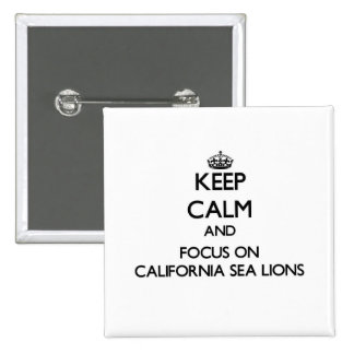Keep calm and focus on California Sea Lions Pinback Buttons