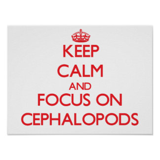 Keep calm and focus on Cephalopods Posters