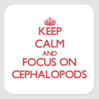 Keep calm and focus on Cephalopods Sticker