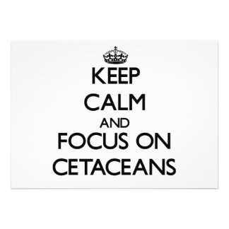Keep calm and focus on Cetaceans Custom Invite