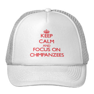 Keep Calm and focus on Chimpanzees Hats
