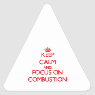 Keep Calm and focus on Combustion Stickers