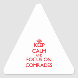 Keep Calm and focus on Comrades Triangle Stickers
