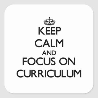 Keep Calm and focus on Curriculum Square Sticker
