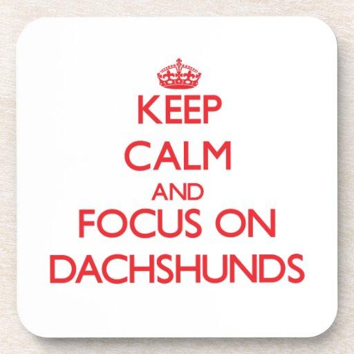Keep Calm and focus on Dachshunds Coasters