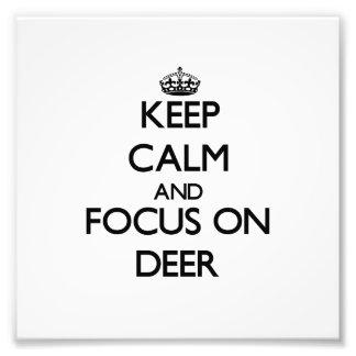 Keep Calm and focus on Deer Art Photo