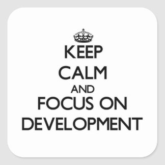 Keep Calm and focus on Development Square Stickers