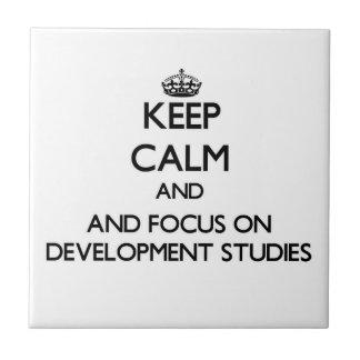 Keep calm and focus on Development Studies Tiles
