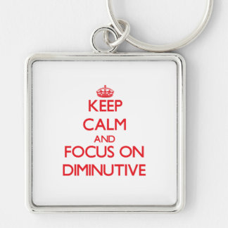 Keep Calm and focus on Diminutive Silver-Colored Square Keychain