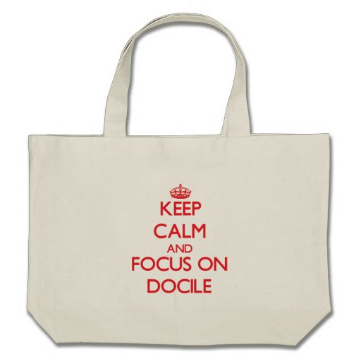 Keep Calm and focus on Docile Canvas Bags