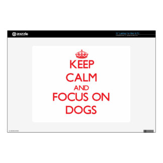 """Keep calm and focus on Dogs 12"""" Laptop Decal"""
