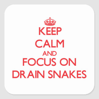 Keep Calm and focus on Drain Snakes Stickers